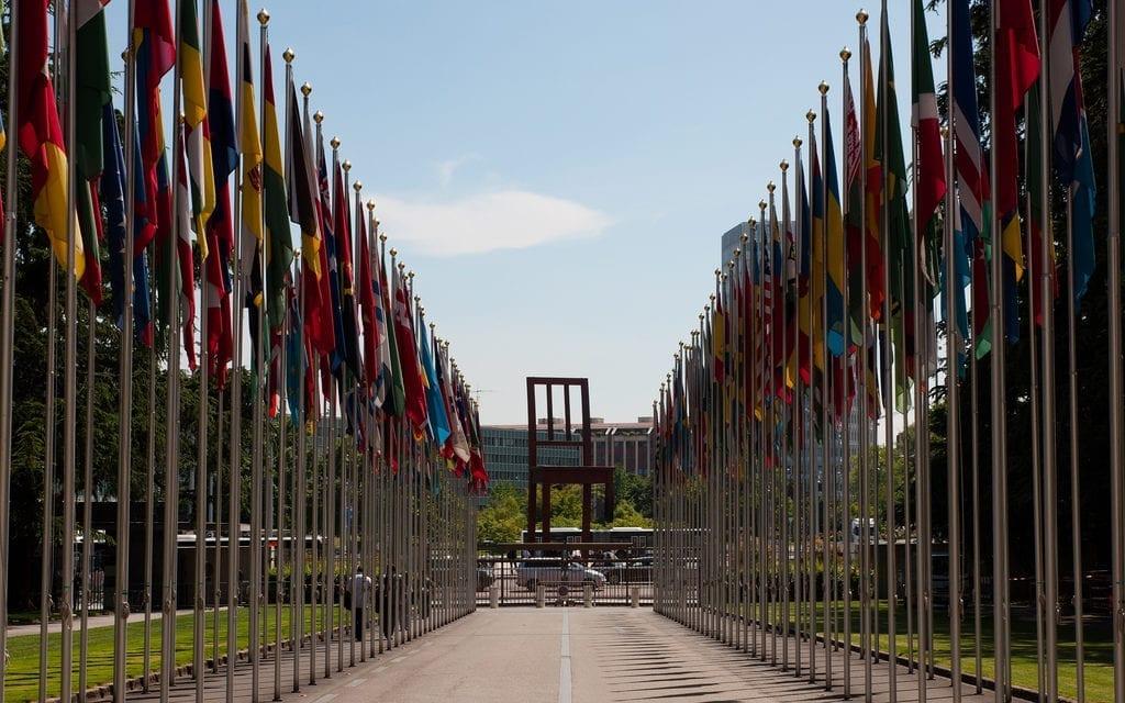 Translation for International organisations and NGOs